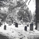 Ode to a Cemetery on All Souls Day