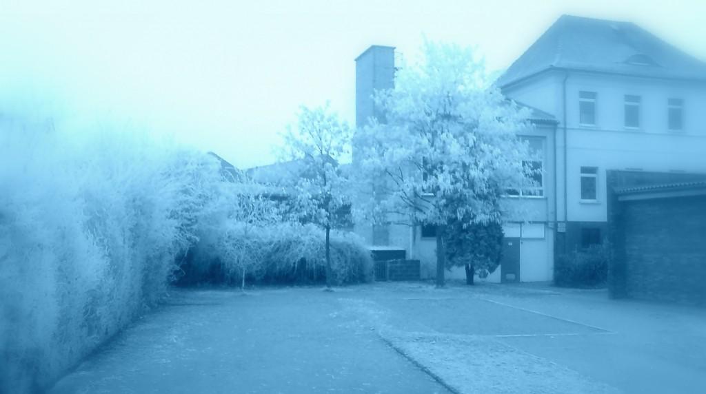 Schoolyard